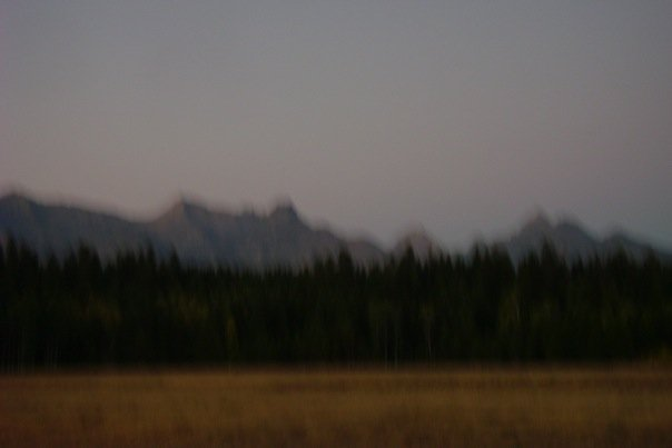 big-prairie-with-a-fog-there-was-a-great-wolf-trai